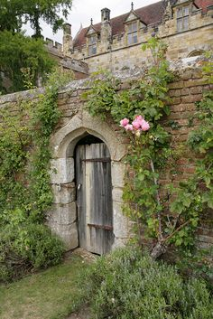 """In Through The Back Door""    Penshurst Place gdns - Kent."