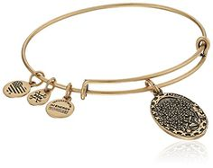 Alex and Ani Because I love you, Daughter II Expandable Rafaelian Gold-Tone Bangle Bracelet