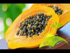 Herbal and Herb: 6 Tác dụng làm đẹp da từ quả đu đủ - Suc Khoe va Doi Song