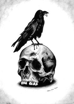 Raven on skull - 02/2015