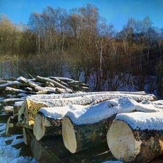 Snow and wood...