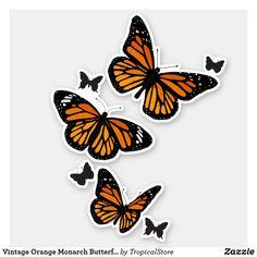 Shop Vintage Orange Monarch Butterflies in Flight Sticker created by TropicalStore. Butterfly Sketch, Butterfly Illustration, Butterfly Painting, Butterfly Wall, Monarch Butterfly, Orange Butterfly, Vintage Butterfly, Orange Aesthetic, Aesthetic Vintage