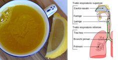 4 rimedi naturali per curare il raffreddore | Rimedio Naturale