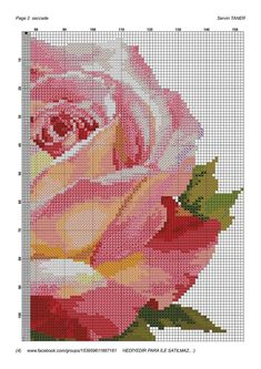 Beautiful Rose graph pattern #graph #graphpattern #rose