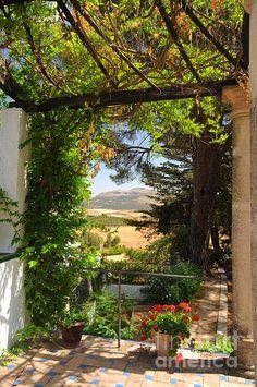Secret Garden. In the Romantic Shadow by Jenny Rainbow. #Spain #Ronda #Garden…