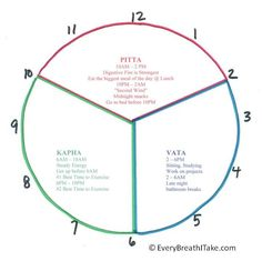 """Ayurveda Energy Clock"" 6AM - 10AM and 6PM - 10PM is Kapha Time. - Namaste"