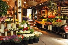 A New Leaf; Chi-Spy_Chicago; Flower Shop
