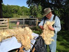 Jon skirting wool