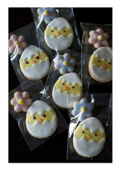 I like these cute chicks!