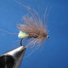 CDC Caddis - killer fly in the Catskills.