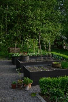 black stained raised beds