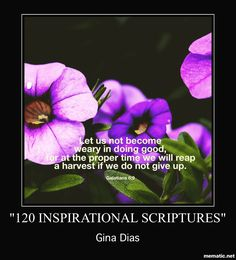 "It's harvest season! Don't give up! Keep your smile shining keep #praying #believing and #lethoperise because God is in control.  For more checkout our #blog and online store. Click the link in our bio or visit FaithfulFindings.com  Come back daily for encouraging verses from our #ebook ""120 Inspirational Scriptures"". Now available on #iTunes #Kobo and Barnes&Noble. It's great for those learning to use their bible. It's a small collection of verses in one place to get you through some trials…"