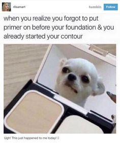 This folly when you don't remember the basics: | 18 Tumblr Posts That Are Only Funny To Makeup Lovers