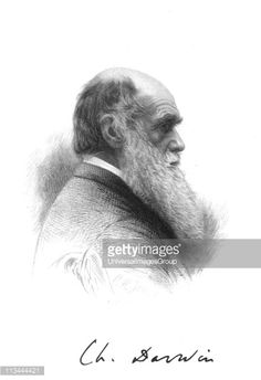 Charles Darwin English naturalist. A pioneer of theory of Evolution by Natural Selection. Engraving and signature