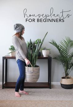 Flower Gardening For Beginners Houseplants for Beginners! I feel like because I over love, I over water :( - Houseplants add texture and color and go with any style of home decor. Use these tips to learn the basic of how to keep houseplants alive! Easy Home Decor, Home Decor Styles, Home Decor Accessories, Decorative Accessories, Plantas Indoor, Decoration Plante, Green Decoration, Inside Plants, Small Plants