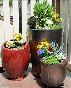 Succulent Patio Garden- this is exactly what I want to do on my patio