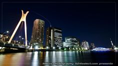 隅田川-水辺の景色(中央大橋)
