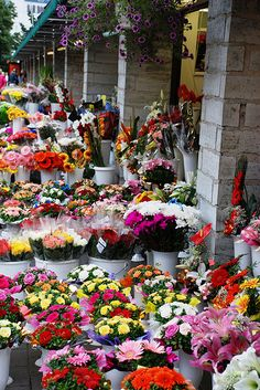 Flower stalls in Tallinn, Estonia ♡ #VisitEstonia #ColourfulEstonia