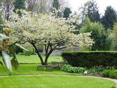 Garden designed by Mien Ruys. Pinned by Jaklien Leemans