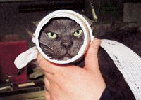 We use an ordinary paper cup with the bottom removed, two strategically placed holes, and some roll gauze as a muzzle for cats. Dog Fails, Dog Muzzle, Dog Selfie, Dog Coats, Dog Owners, Animals And Pets, Your Pet, Dogs, Veterinary Medicine