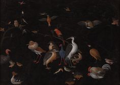 Lot 5 II | NORTHERN ITALIAN SCHOOL, PROBABLY LATE 17TH CENTURY | Various Species of Exotic and Native Birds including Macaws, a Cockatoo, a Crane, a Pelican, a Kiwi, a Cassowary and a Peacock, Together with Pigeons, an Owl, a Swan and other Birds | #AEAONESALE #AEAOldMasterPaintings #ArtEuropeAuctions | 13 December Amsterdam | Browse our catalogue @ http://arteuropeauctions.com/