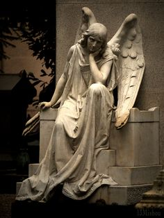 Angel deep in thought! Cemetery Angels, Cemetery Statues, Cemetery Art, Old Cemeteries, Graveyards, I Believe In Angels, Ange Demon, Angels Among Us, Guardian Angels