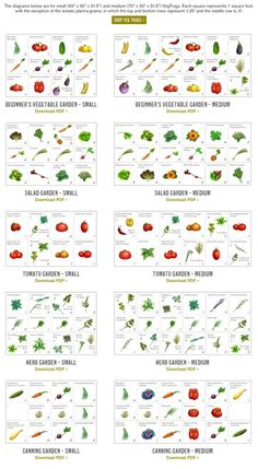 Small Backyard Garden Ideas & Tips ~Family Food Garden Small backyard garden tips. Use containers or the square foot gardening method. Square foot garden spacing and ideas for small space gardening Vegetable Garden For Beginners, Veg Garden, Gardening For Beginners, Vegetable Gardening, Gardening Tips, Vegtable Garden Layout, Small Vegetable Gardens, Vegetable Garden Planning, Veggie Gardens