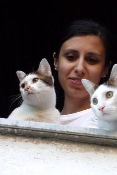 Επταπύργιο Γεντί Κουλέ: οι τυχερές γατούλες