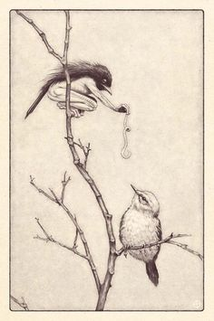 edward binkley fab illustration of a woodland fairy disguised as a mother bird feeding an orphaned chick, grimm and fairy art print