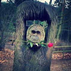 Valentine's 2015. #LoveAdventure