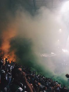 No Pyro No Party #libertapergliultras #sporting #curvasul #ultrasofeurope #ultrasportugal #pyro #ultracommunity Scp, Madrid, Cartoons, Fire, Party, Outdoor, Hs Football, Nails, Amor