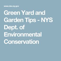 Green Yard and Garden Tips - NYS Dept. of Environmental Conservation