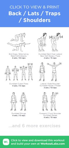 Back / Lats / Traps / Shoulders – click to view and print this illustrated exercise plan created with #WorkoutLabsFit