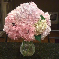 Hydrangeas with a pink hue