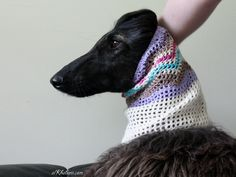 Beautiful snood on beautiful Afghan Hound. Modelling and wearing proud :) Handmade by www.alkhabara.com