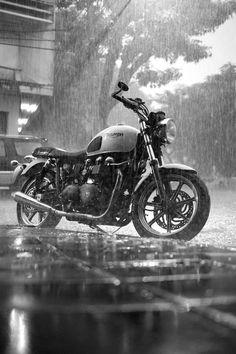 legendbiker:  triumph