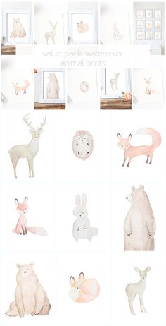 Value Pck: Forest Animal Nursery Print Series