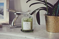 Interior | Jennie Hammar http://www.carlyleavenue.com/products/apothecary-guild-domed-candle-olive-green
