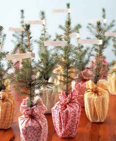 Having a winter wedding? Give your guests these little Christmas trees.