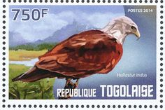 Brahminy Kite stamps - mainly images - gallery format