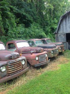 ford trucks old 1951 Ford Truck, Old Ford Trucks, Old Pickup Trucks, Farm Trucks, Cool Trucks, Ford 4x4, Lifted Ford, 4x4 Trucks, Classic Pickup Trucks
