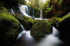 Horseshoe Falls in Mt Field National Park, Tasmania, Australia. #Travel #Australia #Tasmania #Waterfall #Nature #Photography #Green #Zazzle