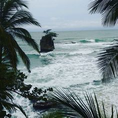 Playa Manzanillo,Limon, Costa Rica #costarica #travel #trip #vacation #beach www.costaricantrip.com