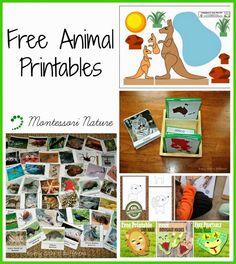 Montessori Nature: Free Animal Printables