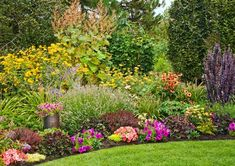 In this backyard, a border blooms in three tiers: plume poppy, yellow-flowered helianthus, and barberry 'Helmond Pillar' at the rear; English lavender, 'Big Sky Sundown' coneflower, and daylilies in the middle; and, down front, dwarf barberry 'Bagatelle,' coral bells 'Obsidian,' hardy geraniums, and colorful annuals.