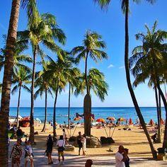 【chick_tac】さんのInstagramをピンしています。 《秋の写真が続いたので… 久々におハワイ〜( ´ ▽ ` )ノ🏝 私は冬が好きですが、ハワイは別‼︎ ハワイになら常夏でも住みたい‼︎(ノ∀`*) #hawaii #waikiki #honolulu #oafu #waikikibeach #デュークカハナモク #sea #sky #blue #parm #beach #summer #trip #travel #photo  #ハワイ #ワイキキ #ワイキキビーチ #海 #空 #青 #ヤシの木 #ビーチ #夏  #写真 #写真好きな人と繋がりたい #写真撮ってる人と繋がりたい #pentax #k100d #無加工》