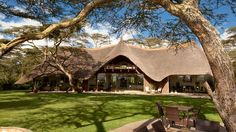 Solio Lodge is a luxury lodge in Kenya set in of private rhino breeding conservancy and is one of the best lodges in Laikipia to see the big 5 Village House Design, Village Houses, Flora Und Fauna, Thatched Roof, Future Travel, Africa Travel, Luxury Life, Lodges, Best Hotels