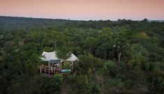 Elephant Camp - Vic Falls Travel and Tours Zimbabwe Elephant Camp, Glass French Doors, Canvas Tent, Victoria Falls, Plunge Pool, Luxury Camping, Zimbabwe, Woodland, Safari
