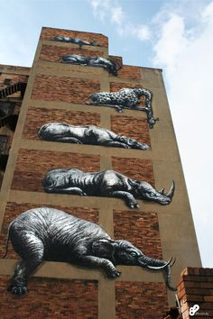 ROA's mural for I ART JOBURG can be seen at 63 Sivewright Avenue, Maboneng precinct, Johannesburg (image by 89 candy photography) Best Graffiti, Street Art Graffiti, Candy Photography, Graphic Illustration, Illustrations, Epic Art, Mural Ideas, Oui Oui, Street Artists