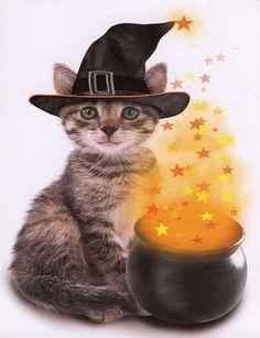 Theme Halloween, Halloween Cat, Happy Halloween, Halloween 2015, Kittens Cutest, Cats And Kittens, Cute Cats, Tabby Cats, Cat Cards